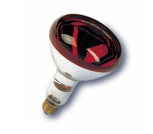 Bela Ersatzlampe 250 Watt